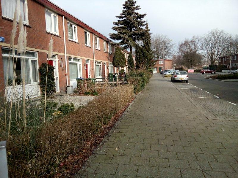 Renovatie tuinenhoven gaat door