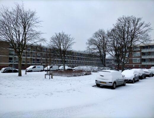 Koning winter, ook in Rotterdam